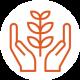 Pflanzenschutz_Orange