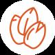 Saatgut_Orange